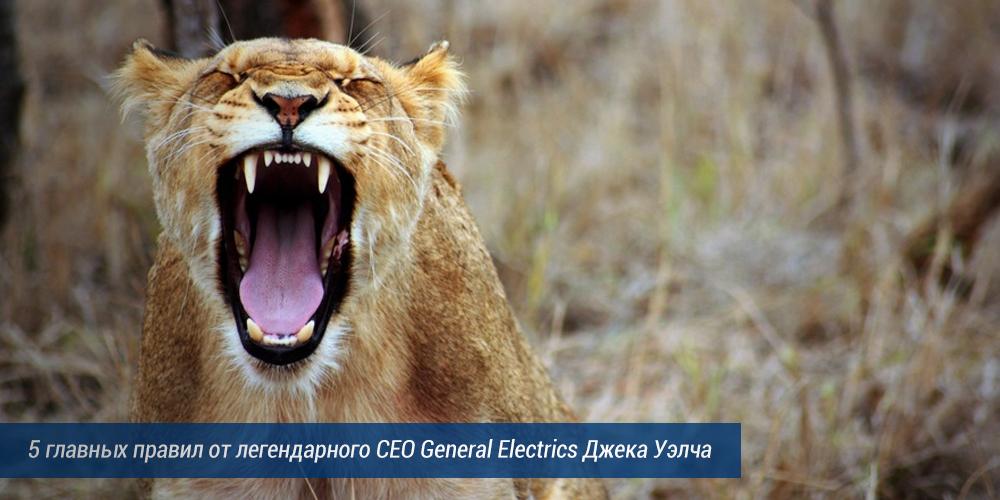 Найм сотрудников: 5 главных правил от легендарного CEO General Electrics Джека Уэлча