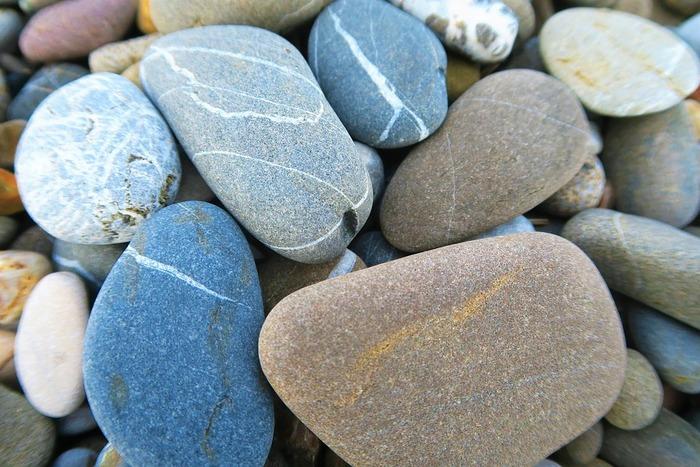 Камни питомцы могут выглядеть так
